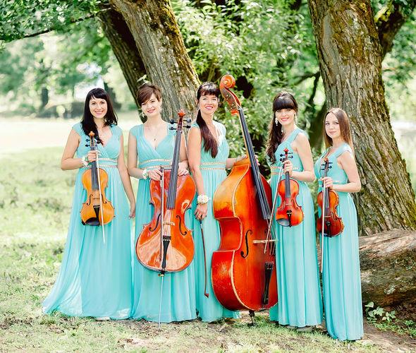 Амелия, струнный ансамбль